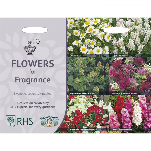 RHS Flowers For Fragrance