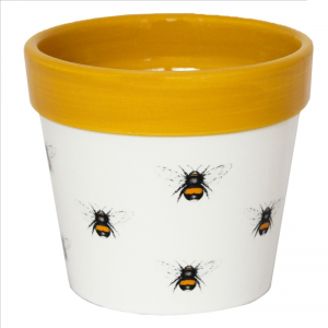 Cacti Planter Bumble Bee 13cm