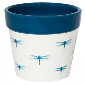Cacti Planter Dragonfly 10cm