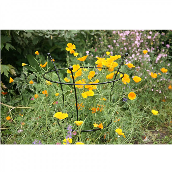 Herbaceous Support Small - Twin Pack