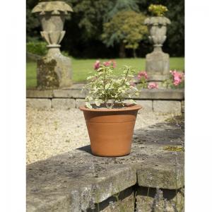 Harrogate Pot Small