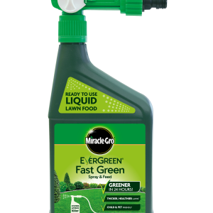 Evergreen® Spray & Feed 1L