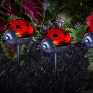 Ladybirds -LED  Triple Pack