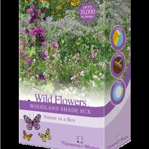 Wild Flowers Woodland Shade Mix