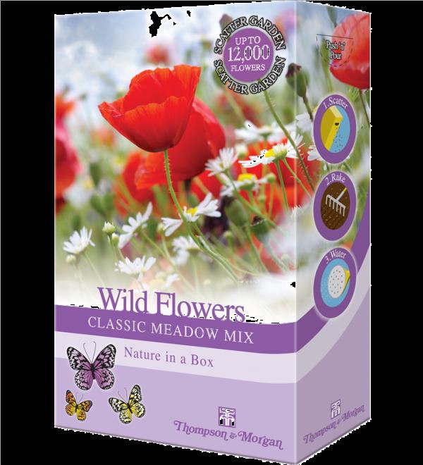 Wild Flowers Classic Meadow Mix