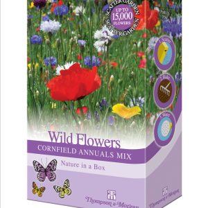 Wild Flowers Cornfield Annuals