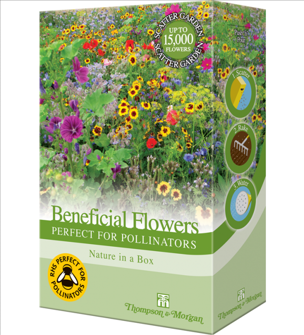 Flowers Perfect for Pollinators