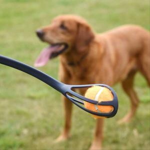 Pooch Ball Launcher