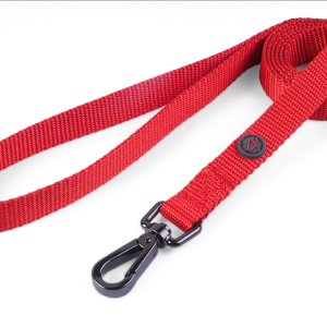 WalkAbout Red Dog Lead - Standard