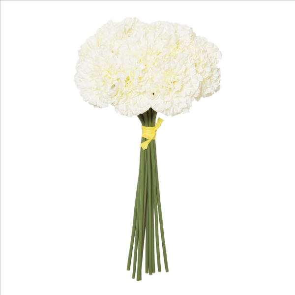 Cream Carnation Hand Tied
