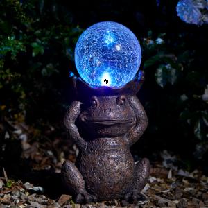 Gazing Frog LED