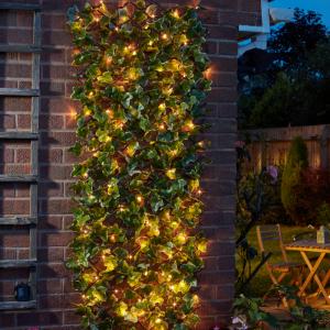 Solar In-Lit Ivy Trellis 50 LED