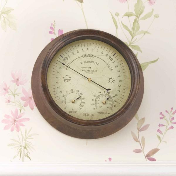 Westminster Barometer & Themo