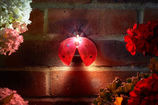 Lady Bug Light LED