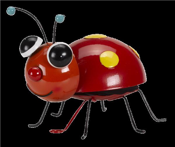 Large Loony Ladybug