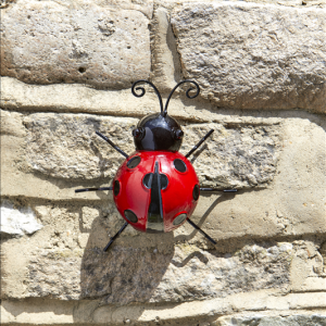 Large Ladybird Hanger On