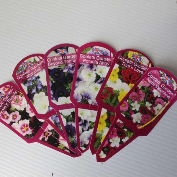 Confetti Garden 3 for £12