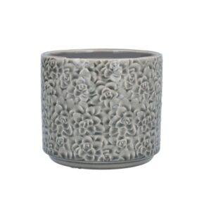 Grey Succulents Ceramic Pot