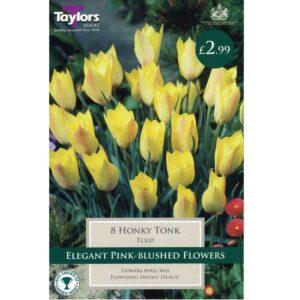 Tulip Honky Tonk 8 Bulbs