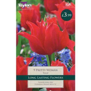 Tulip Pretty Woman 9 Bulbs