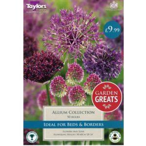 Allium Collection 50 Bulbs