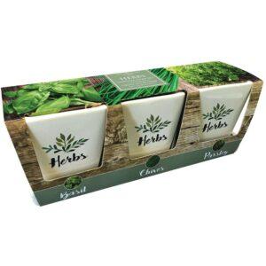 Windowsill Herb Pots & Tray