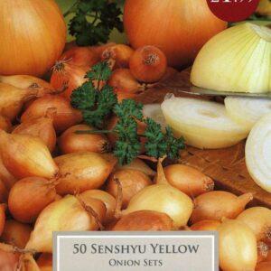 50 Onion Senshyu Yellow
