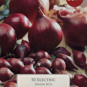 50 Onion Electric