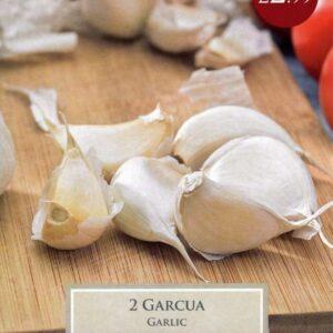 2 Garlic Garcua