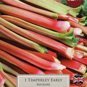 1 Rhubarb Timperley Early